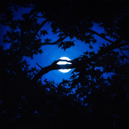 Blue Moon (Amagansett)